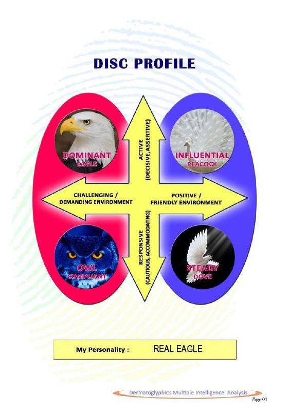 disc-profile